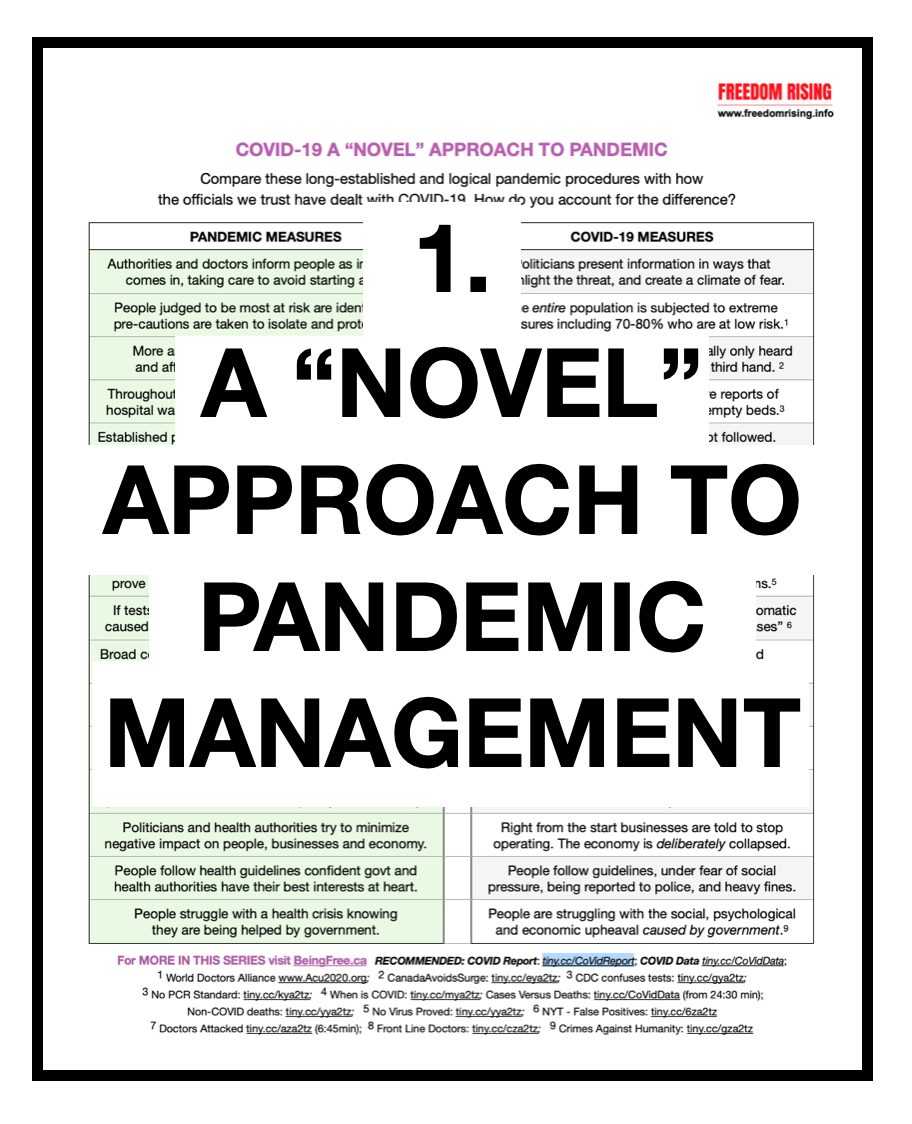 A Novel Approach to Pandemic Management
