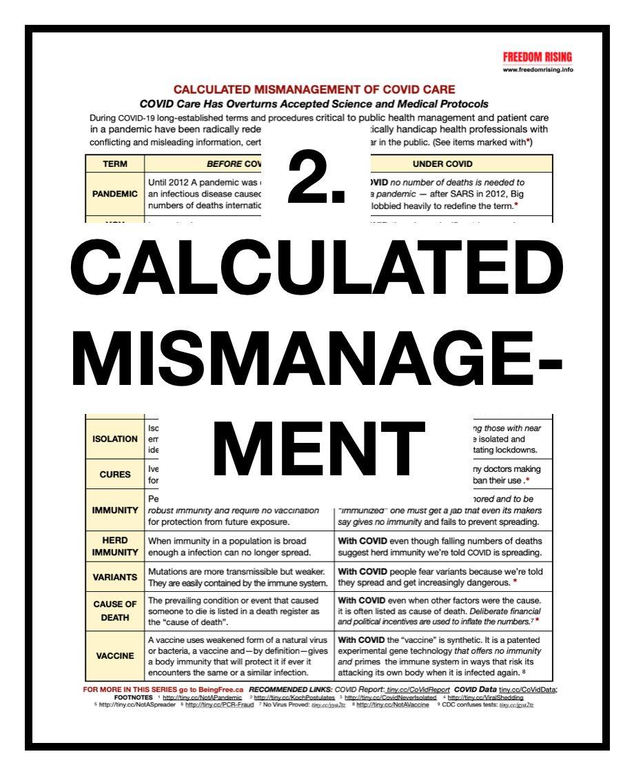 Calculated Mismanagement